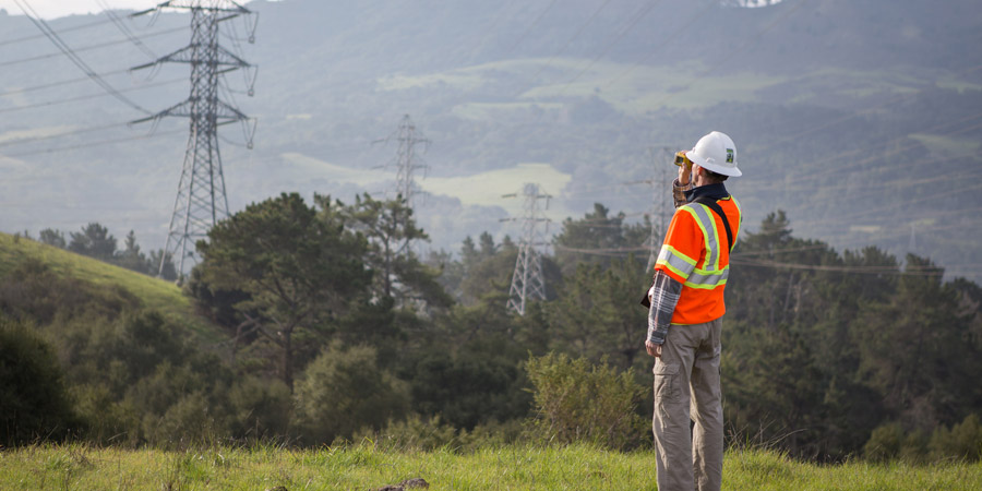 search vegetation management jobs